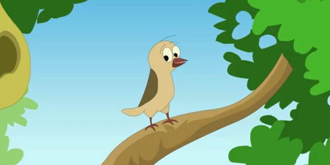 学习动物单词-会飞的动物